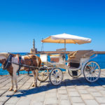 chania carriage horse_448935409