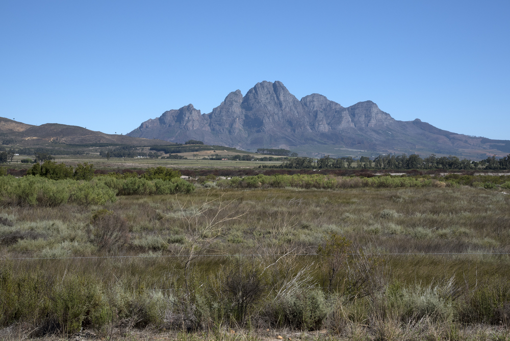 Simonsberg Mountain_403147045