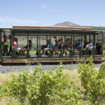 Rickety Bridge Winery a tourist tram ride _358178258
