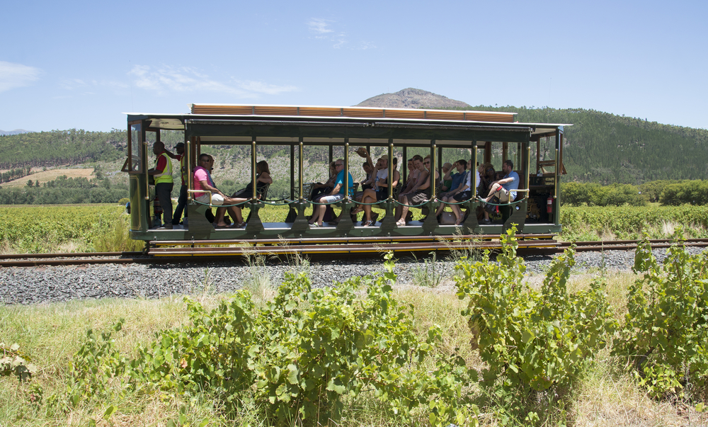 Rickety Bridge Winery a tourist tram ride _358178258