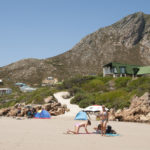 Rooi Els on the Cape Whale Coast_351579644