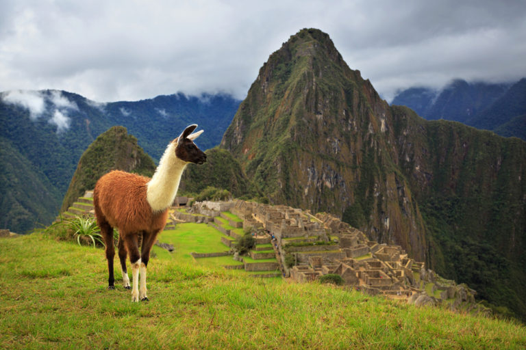 Machu Picchu, Exploring the World Wonder near Sacred Valley