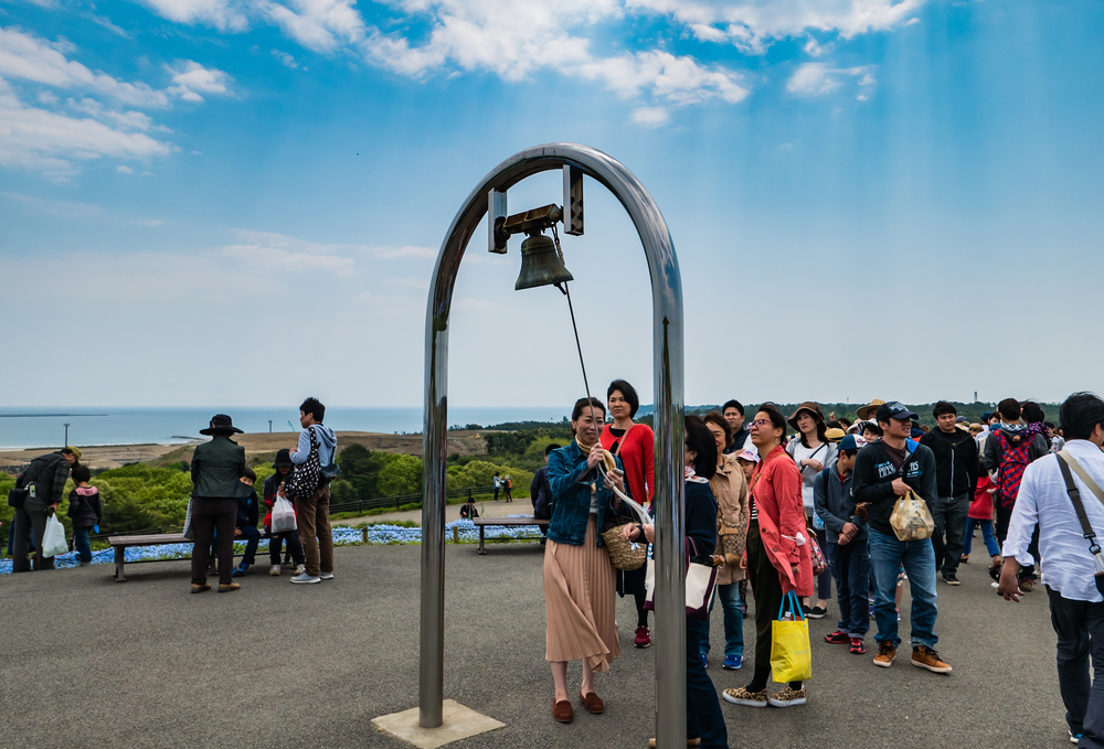 Tourists at Hitachi Seaside Park_472947811