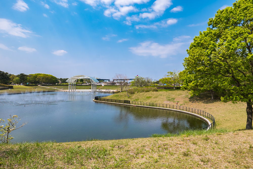 Garden in Hitachi Seaside Park_472968583