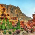 Wadi Jeihoon_464052089