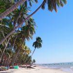 mui-ne-white-sandy-beach_502019137