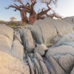 rocks-and-baobab-tree_469454963