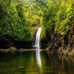 lavena-coastal-walk-on-taveuni-island-fiji_525883738