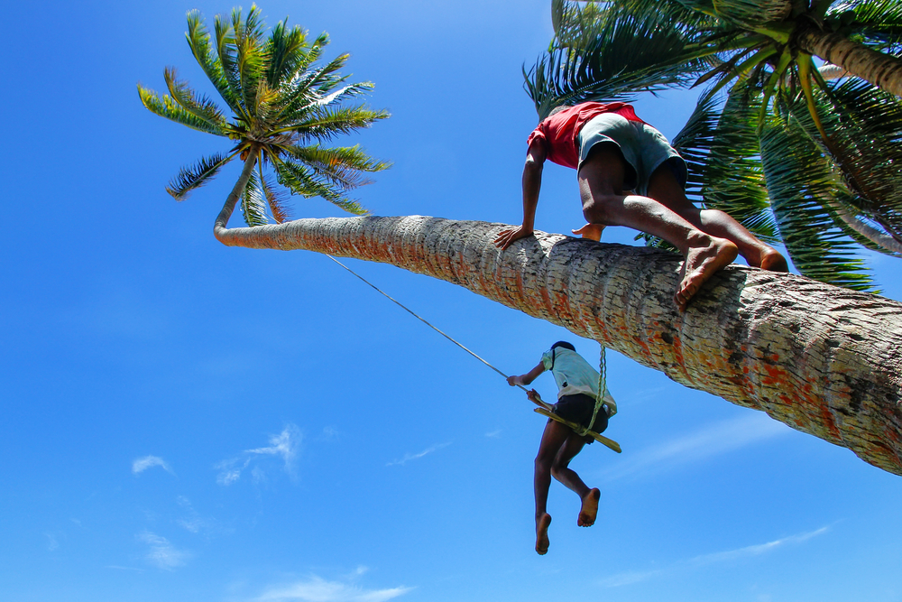 rope-swing-in-lavena-village-taveuni-island_525028864