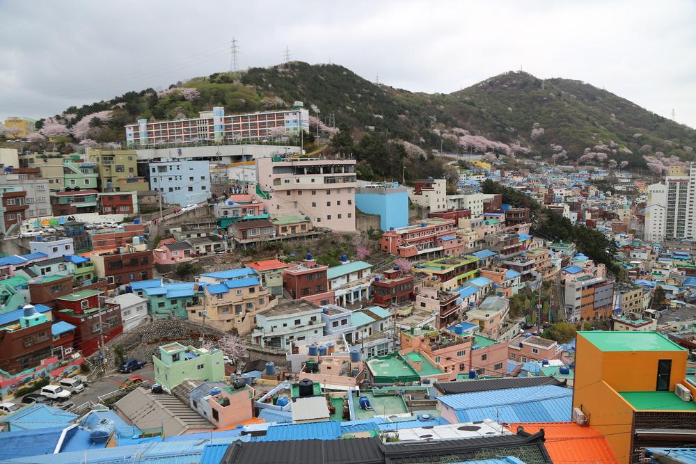 gamcheon-culture-village-in-busan-korea-_525929788