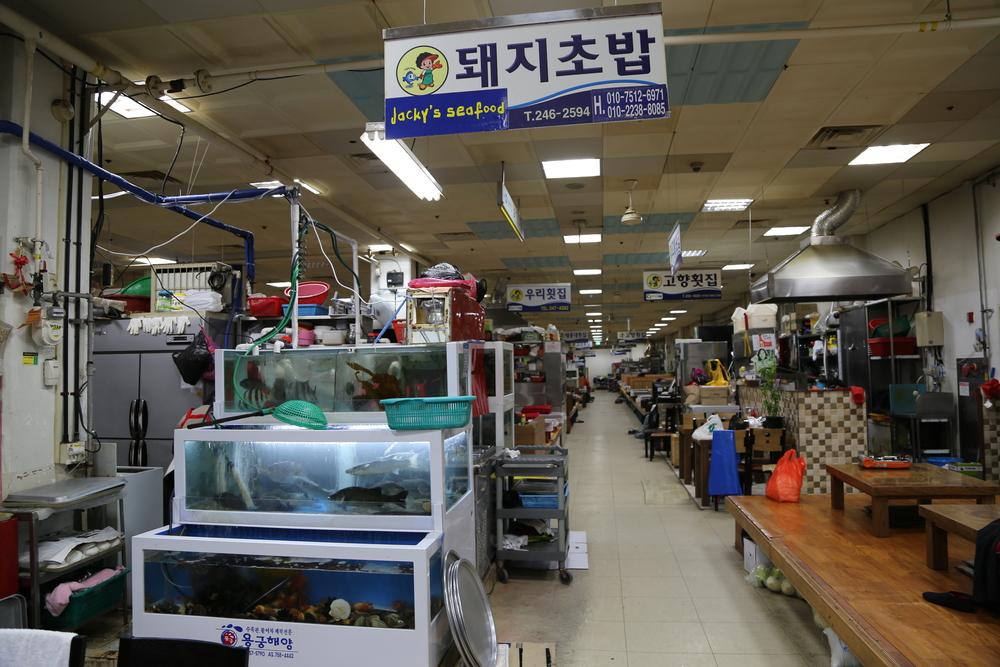 jagalchi-fish-market-in-busan_525829747