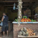 Street vegetable and fruit market_557537407