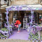Sirmione, Italy Show-window the shop of perfumery _485211238