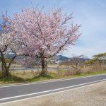 Arashiyama, Kyoto_557040568
