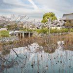 Idyllic landscape of Arashiyama, Kyoto, Japan_534234865