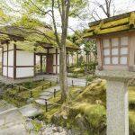 Japanese garden in tokyo_529361833