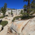 Olmsted Point, Yosemite National Park_563657434
