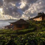 village at Ban Rak Thai_566090884