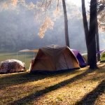 Camping and tent under the pine forest at Pang-ung , pine forest park_562960570
