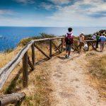 Reganico path for Zurletto bay_566772568