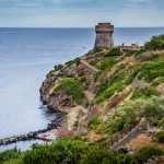 tower of the port with sea views in capraia_566772436