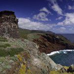 trekking trail to the tower of Zenobito and Calarossa among arbutus trees_391001029