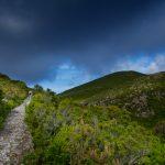 trekking trail in Capraia Island, Arcipelago Toscano National Park, Tuscany_391000858
