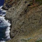 trekking trail to the tower of Zenobito and Calarossa among arbutus trees in capraia_391000978