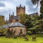 Wells Cathedral (Cathedral Church of Saint Andrew)_325299941