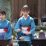 Japanese women in traditional kimono prepares the tea ceremony at garden of the Hagiwara Temple in kagawa_321264947