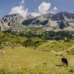 North Brenta mountain range with Pietra Grande, Cima Vagilana, Cima Sassara_570357514