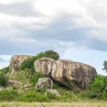 Serengeti National Park_581110447