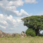 Serengeti National Park_581110480