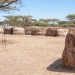 Serengeti National park, Tanzania, Africa_581110486