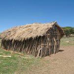Serengeti National Park, Tanzania_575894548