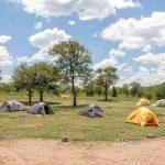 Serengeti National Park_394355602