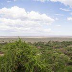 Serengeti National Park_123775177
