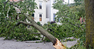 Disaster Declaration Approved For State's Tornado Recovery