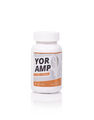 YOR-AMP