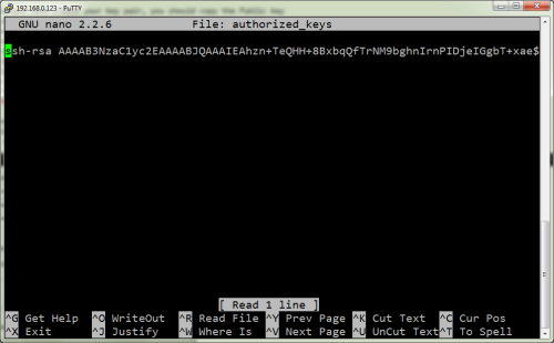 Pasting the public key into the authorized key file.