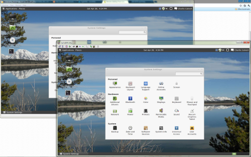 Mint Linux: VNC in the foreground, VirtualBox in the background. Click for better view.