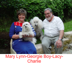 Mary Lynn Heare