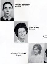 Anna June Adams