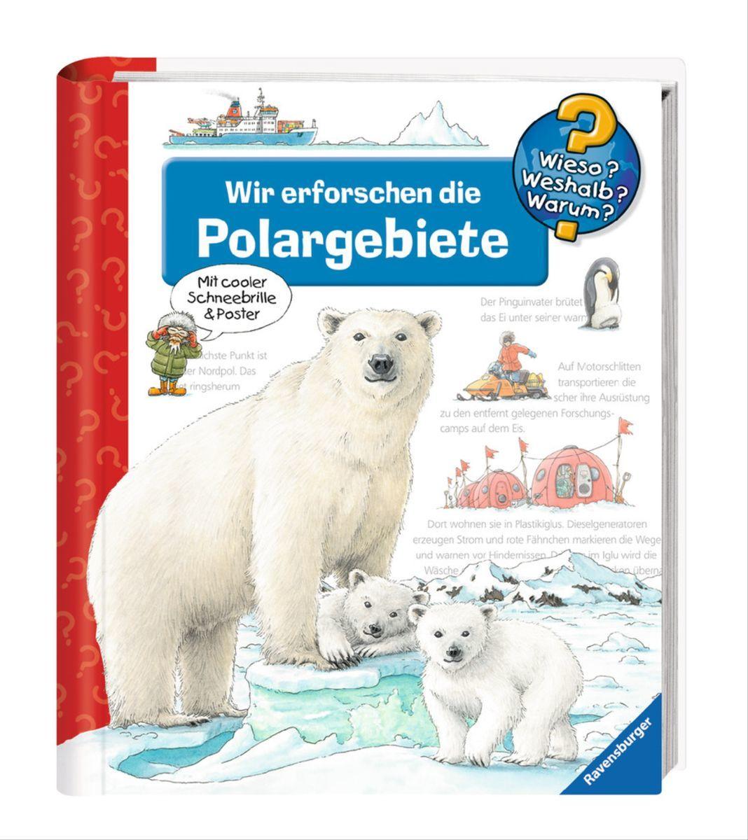 Explorando Las Regiones Polares