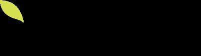 Vega logo color