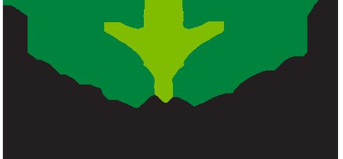 Swanson logo color