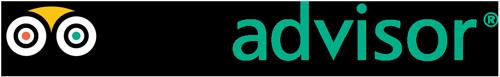 Tripadvisor logo color