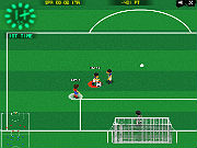 Play Euro 2012 game