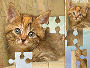 Play Simple Puzzle with Animal game