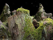 Play Samorost game